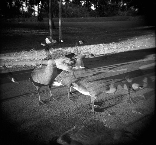 Gompers Park Double Exposure