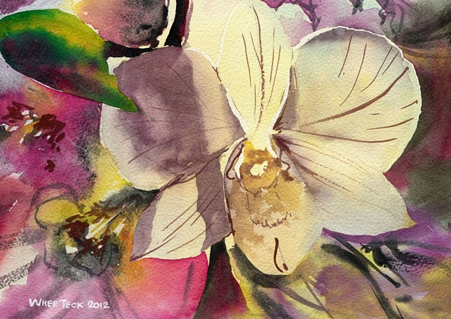 20120423 Orchid