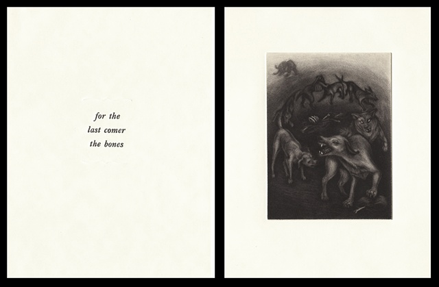 "plate seventeen:  ""for the last comer the bones""  2006"