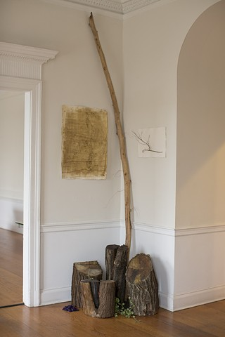 Corner 2013 Salvaged wood, beeswax, gourd tendrils Variable