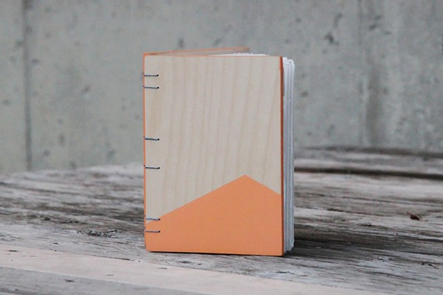 small notebook - apricot + sage