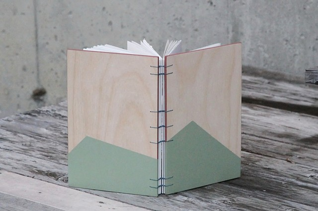 large notebook - sage + mauve