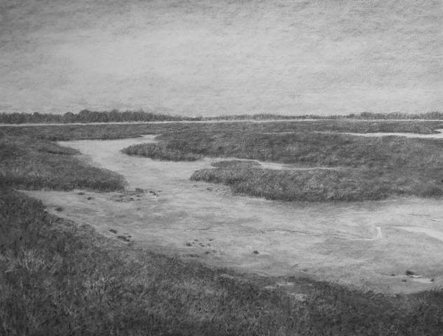 katherine meyer drawing charcoal Martin Luther King bird sanctuary Oakland