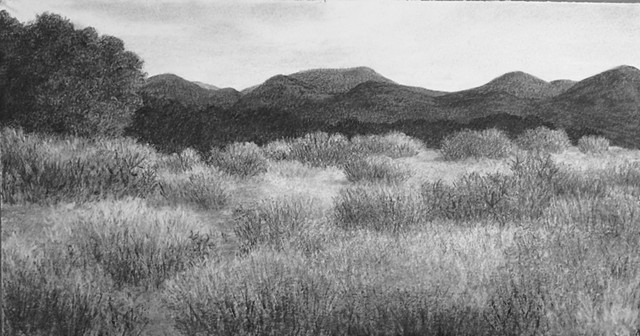 Katherine Meyer drawing charcoal New Mexico high desert mountains
