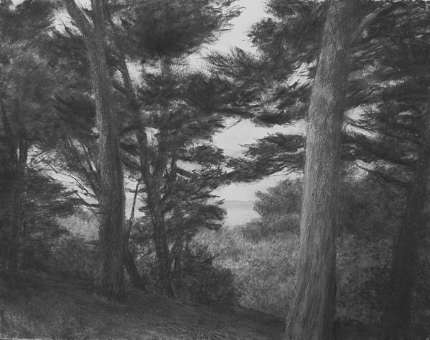 katherine meyer drawing charcoal san francisco bay
