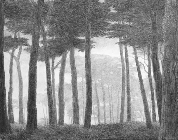 Katherine Meyer drawing charcoal San Francisco coast fog