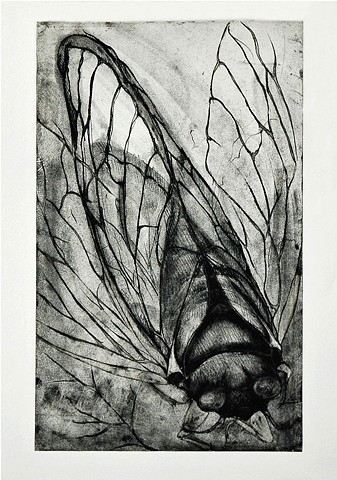 Intaglio Soft Ground print
