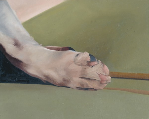 Oil painting of dog paw by Chantelle Norton.