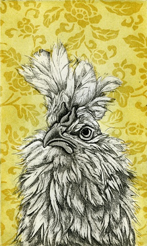Chicken etching print with aquatint design background by artist Chantelle Norton.
