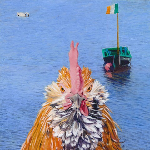 Rooster at Galway Bay, Galway, Ireland. Chicken in Irish landscape.