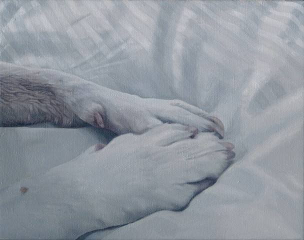 Oil painting of dog paws on bed sheets at dawn by Chantelle Norton.