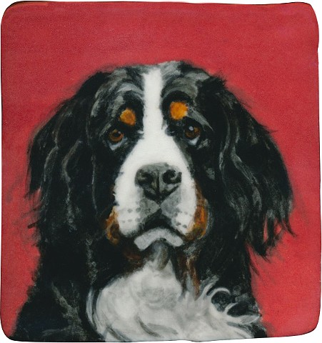 Ceramic handmade tile, hand painted with underglazes, high-fired, portrait of a Bernese Mountain dog by Chantelle Norton.