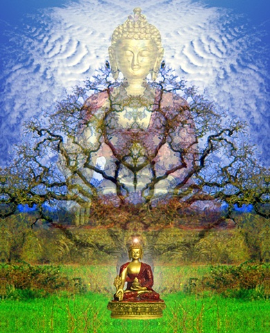Multidimensional meditation offering medicine to the mind and heart with raptors listening...