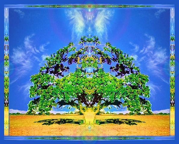 oak tree with cloud angel wings, altar art, symmetrical beauty