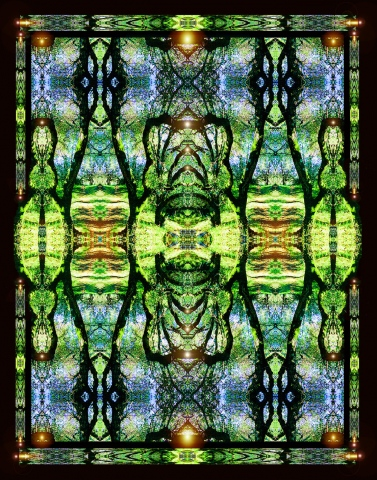 roads less travelled, mandala, intricate symmetrical design, woods, oak forest