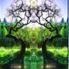 the Green Radiant Mind of Trees