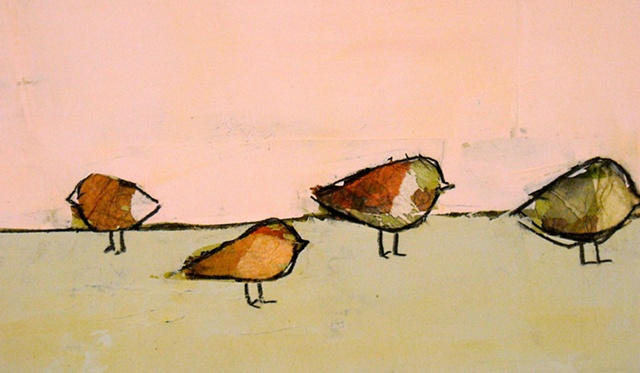 City Birds 1