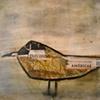 Baltimore Gull 4