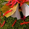 Act I: Skirt Book as Flower in Incomplete Garden