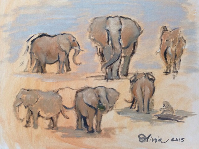 Millisecond studies of Elephants at Seneca Park