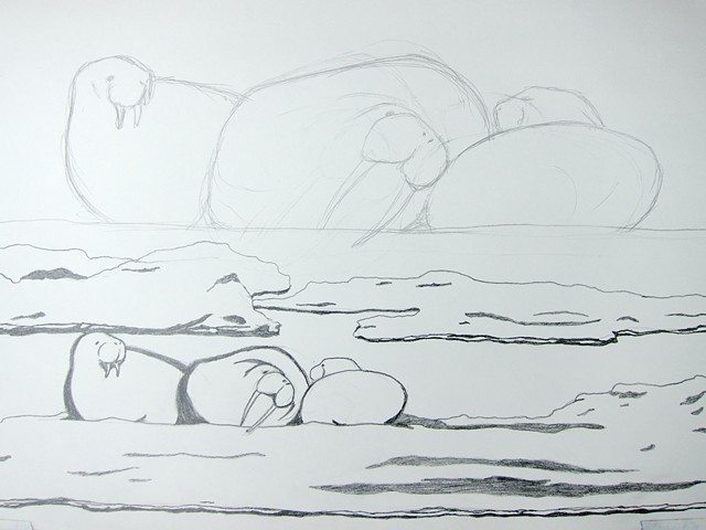 graphite drawing of a pacific walrus herd on an ice floe in the Chukchi Sea by Chelsea Clarke. Preparatory study for a woodcut print.