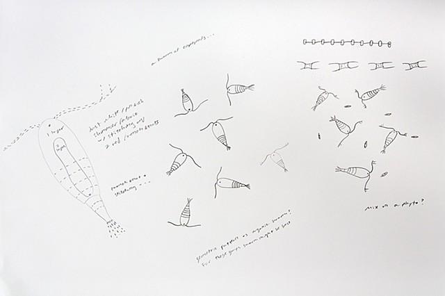 geometric plankton pattern design, repeating copepod pattern by chelsea clarke