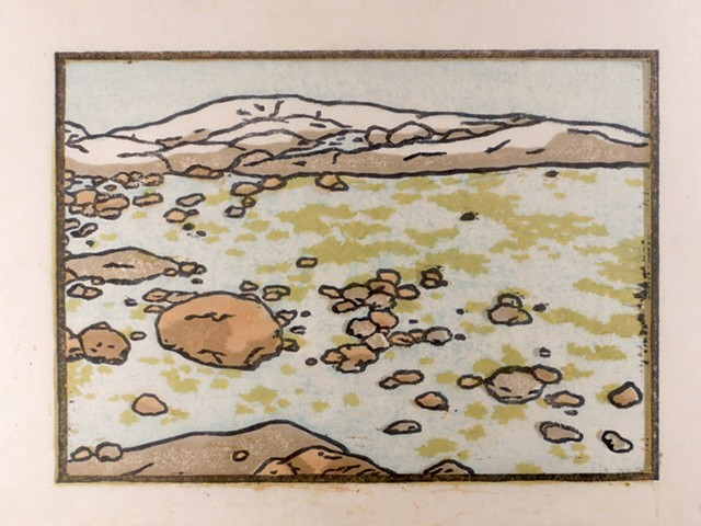 five color japanese woodblock print (moku hanga) of Wass Island Nature Conservancy Preserve in Beals, Maine. Jonesport, downeast Maine, rocky coast with seaweed