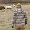 Peterson Farm Sweater