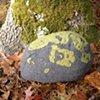 Fieldstone Pillow Green #4