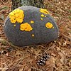 Fieldstone Pillow Yellow #1