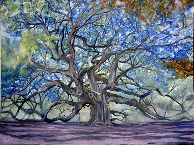 """""""Angel Oak"""",St Johns Island, South Carolina"""