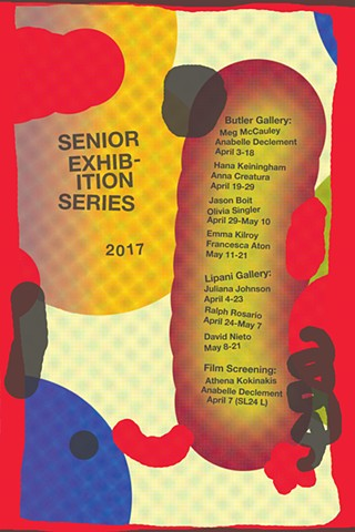 Senior Exhibitions 2017