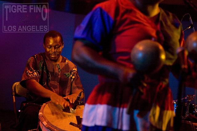 Garifuna Collective, photo by Tiger Munson