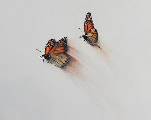Migration I (detail)