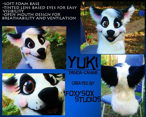 Yuki the Panda Dog