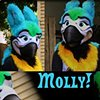 Molly Parrot