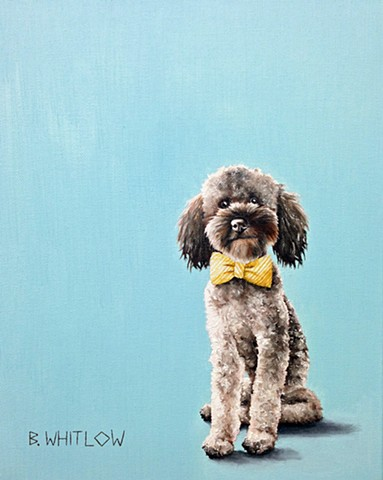 """I'm often asked about how to talk to women.  I say just be yourself.  But then myself happens to be absolutely adorable, so..."" - Clyde.  Whimsical golden doodle pet portrait by Beth Whitlow"