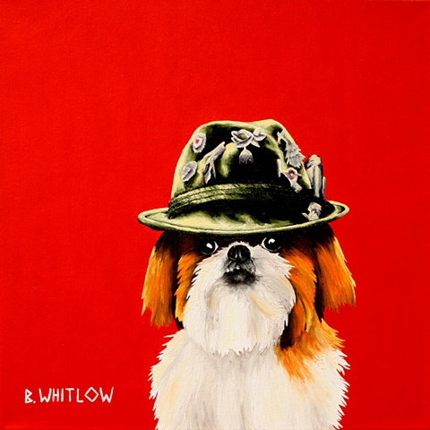 custom pet portrait, shih tzu