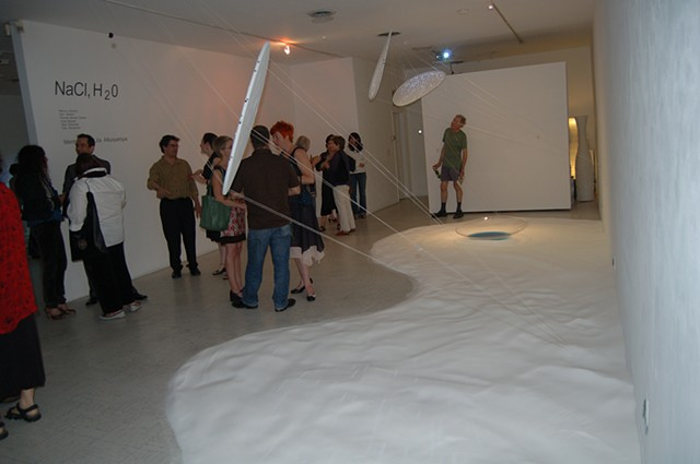 "2007-""NaCl, H2O"" Installation show LAAA/G825"
