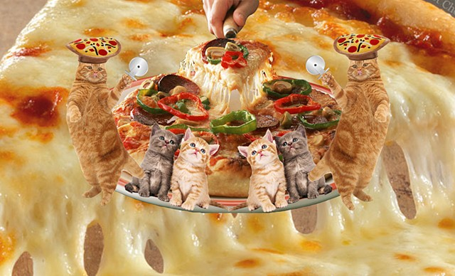 Pizza Time Cats Collage