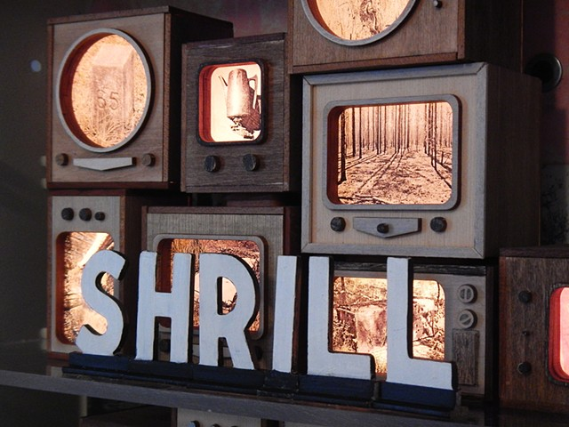 Photographs, miniature televisions