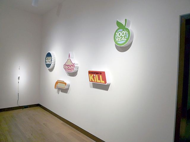 installation image from Vsual Plastic