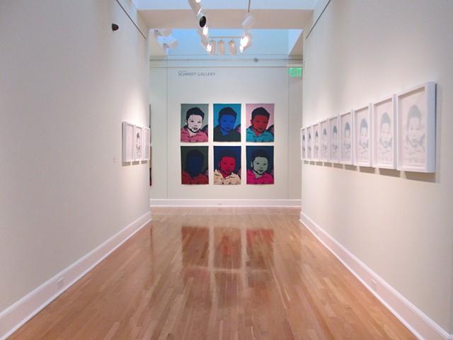 installation William and Florence Schmidt Art Center Belleville, Illinois