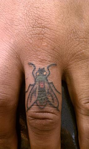 fly tattoo, finger tattoo, mason hogue