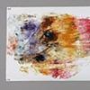 Cellophane Print