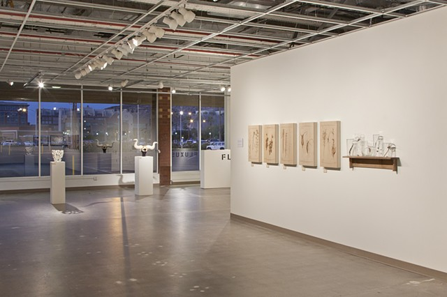 Fluxus, Senior Exhibition Group Show at Arizona State University