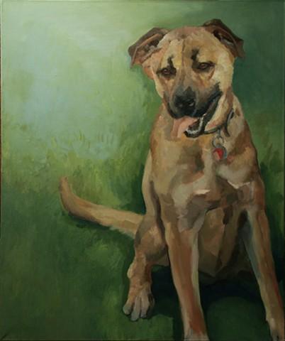 Dog art pet portrait painting of Chow Shepard mix