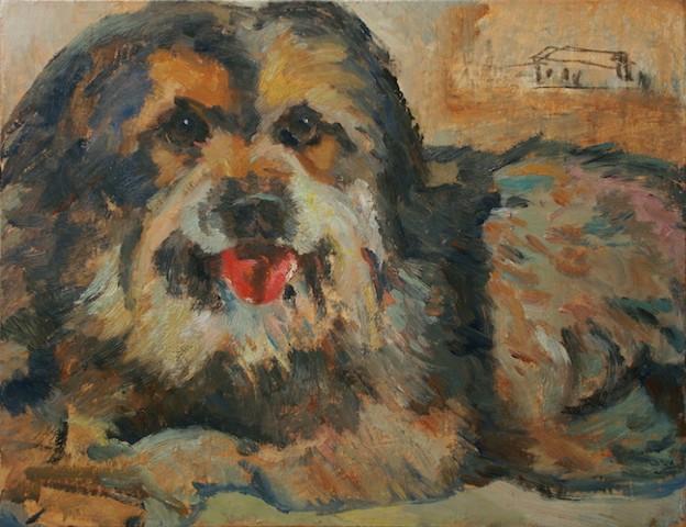 lap dog small mutt
