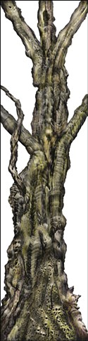 Tree #11