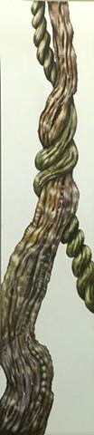 scratchboard, vine, tree